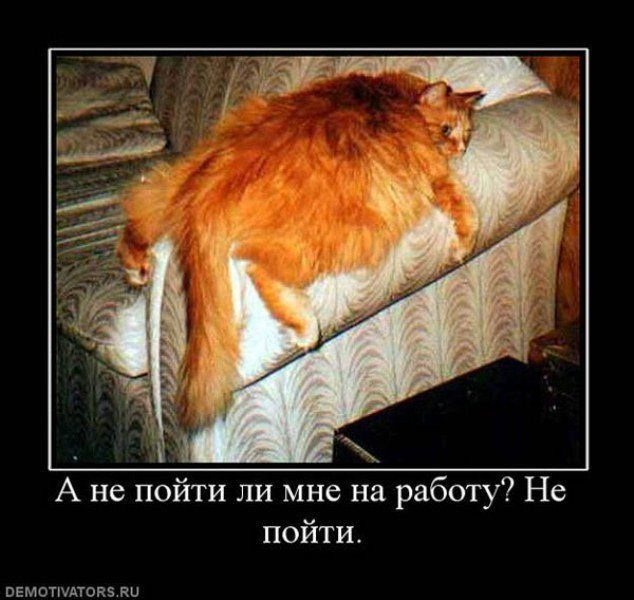 http://jette.ru/wp-content/uploads/2012/08/405818_a-ne-pojti-li-mne-na-rabotu-ne-pojti3.jpg