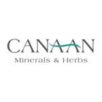 Cannaan — отзывы о косметике