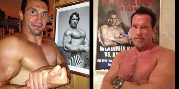 Геи мерятся мускулами