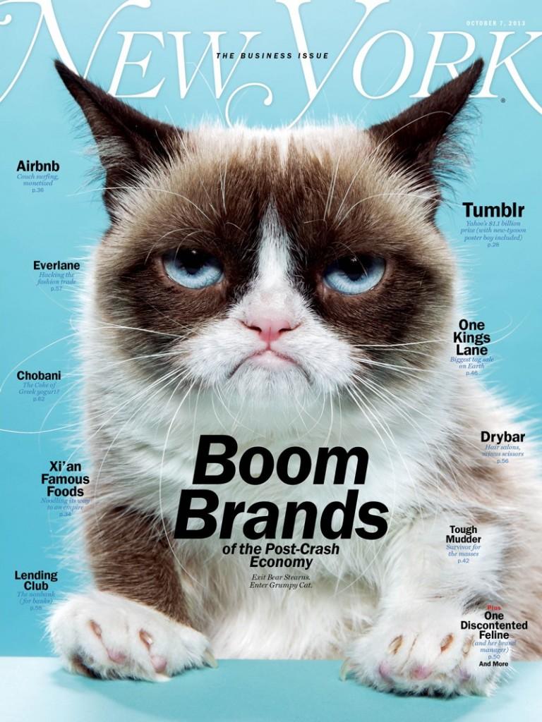 «Сердитая кошка» обогатила свою хозяйку на 100 млн