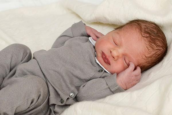 Новорожденный герцог Онгерманландский Николас Пауль Густав